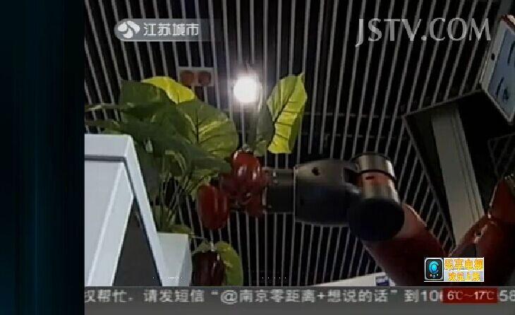 视觉机器人 会下棋会摘辣椒