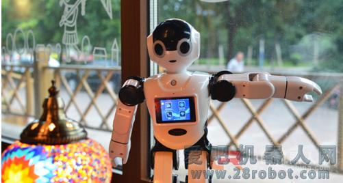 管中窥豹——智能机器人公司的发展之路