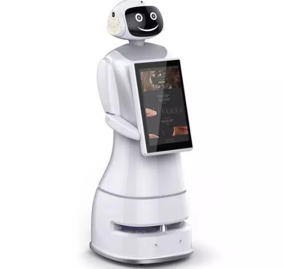大毅机器人