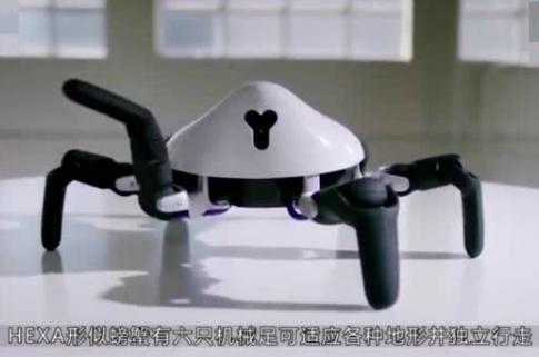 中国24岁天才发明蜘蛛机器人