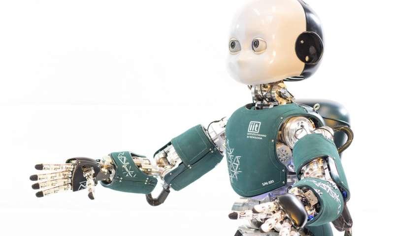 机器人iCub作为嵌入式AI的标准机器人研究平台的重要性