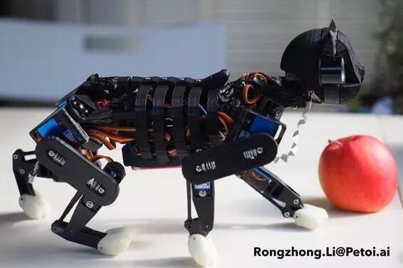 3D打印机器人猫