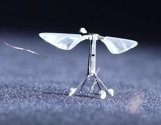微型蜜蜂机器人
