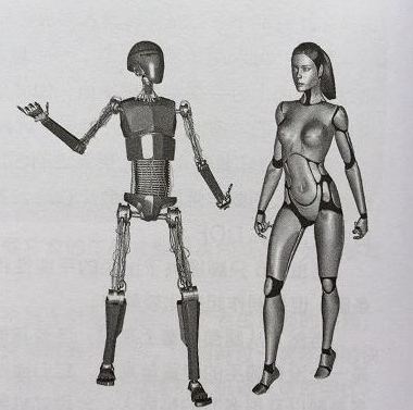 两足机器人与人形机器人简介