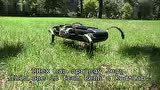 RHex特种智能机器人