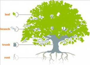 人工智能算法--决策树(DT)