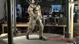 世界顶级人形智能机器人