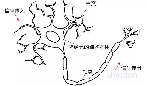 从人工神经网络谈机器究竟是怎么学习的?