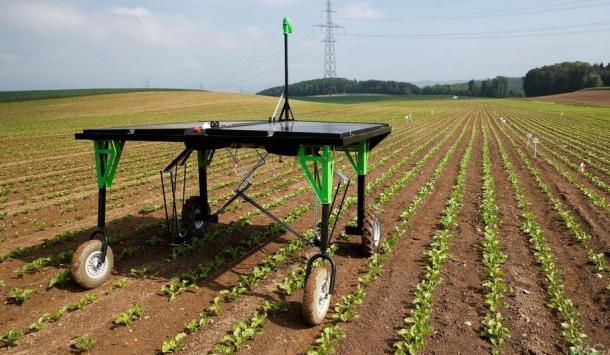 机器人农民:除草机器人问世
