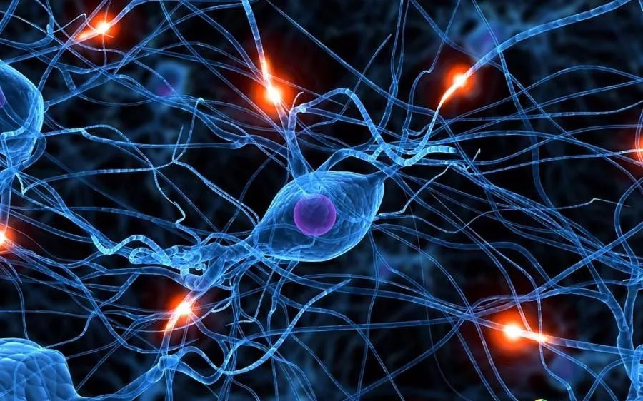 意识解释自觉下的人工智能三重境界