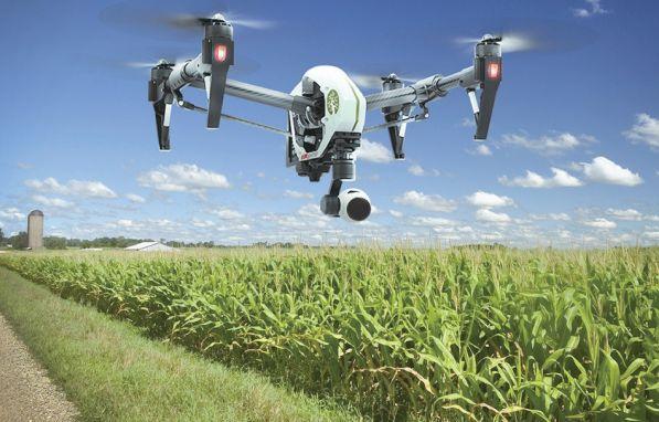 初显身手的农业机器人